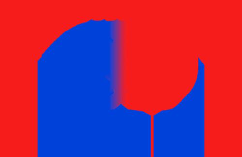 Институт мировых цивилизаций