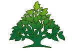 Средняя образовательная школа  Института естественных наук и экологии,  ИНЕСНЭК